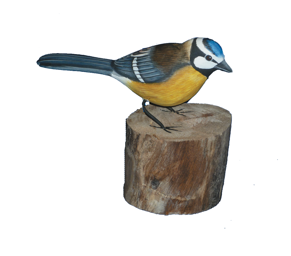 Handpainted Carved Wooden Blue Tit On Wood